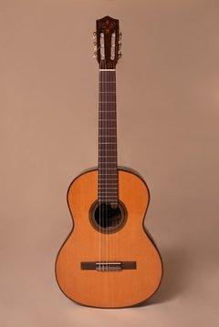 Guitarra – MAN Z – Mantini